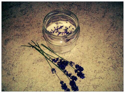 Lavendelsukker